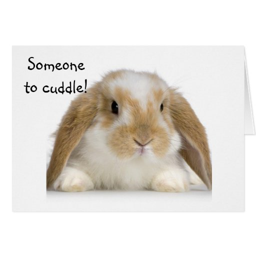 NEW BABY=SOMEONE TO CUDDLE/LOVE GREETING CARD
