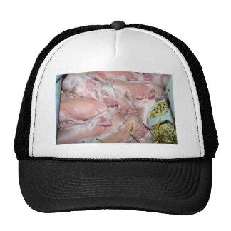 New-born Piglets Mesh Hat