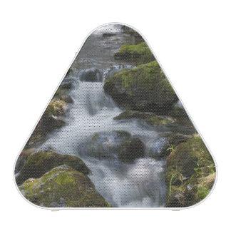 New Brunswick, Canada. Dickson Falls in Fundy