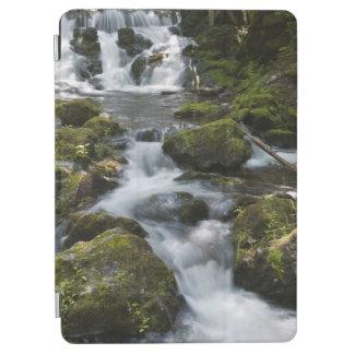 New Brunswick, Canada. Dickson Falls in Fundy iPad Air Cover