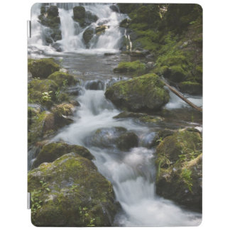 New Brunswick, Canada. Dickson Falls in Fundy iPad Cover