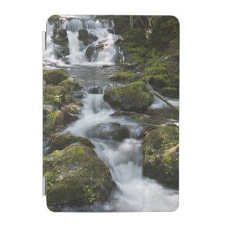 New Brunswick, Canada. Dickson Falls in Fundy iPad Mini Cover