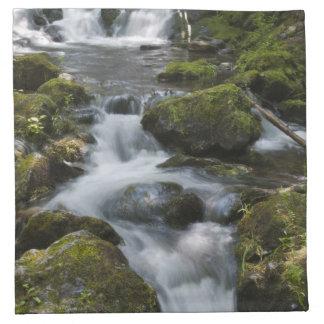 New Brunswick, Canada. Dickson Falls in Fundy Napkin