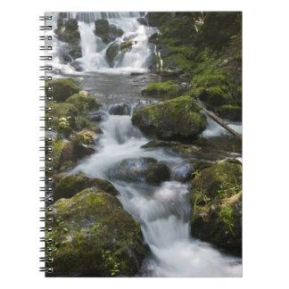 New Brunswick, Canada. Dickson Falls in Fundy Notebook