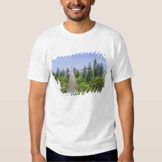 New Caledonia, Grande Terre Island, Noumea. Shirts
