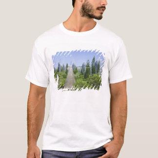 New Caledonia, Grande Terre Island, Noumea. T-Shirt