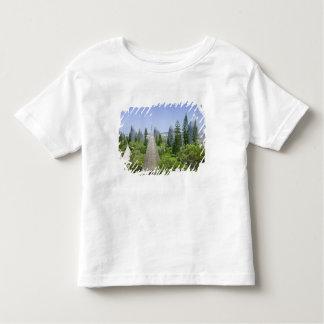 New Caledonia, Grande Terre Island, Noumea. Toddler T-Shirt