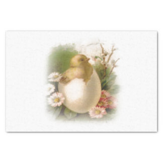 New Easter Chick Tissue Paper