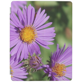 New England Aster iPad Smart Cover iPad Cover