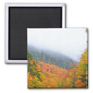 New England Autumn 068 Square Magnet