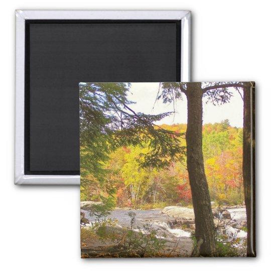 New England Autumn 127 Square Magnet