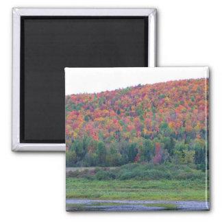 New England Autumn 21 Square Magnet