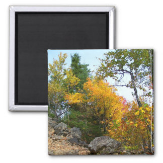 New England  Autumn 44 Square Magnet