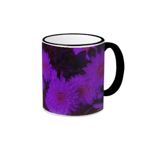 New England Autumn, Purple Mums. Coffee Mug