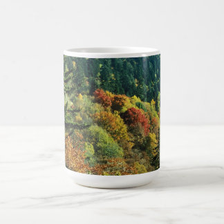 New England Fall Foliage Coffee Mug