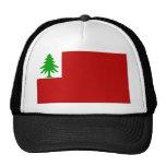New England Flag Cap