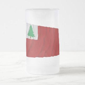 New England Flag Frosted Glass Beer Mug