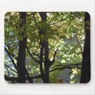 NEW ENGLAND SPRING MOUSE PADS