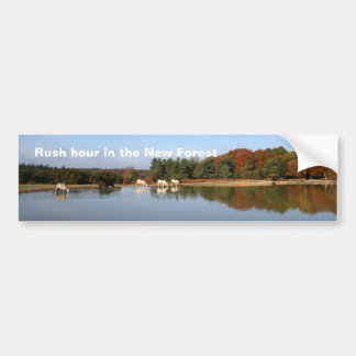 New Forest bumper sticker