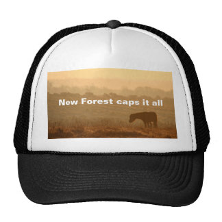 New Forest cap