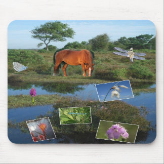 New Forest collage mousemat