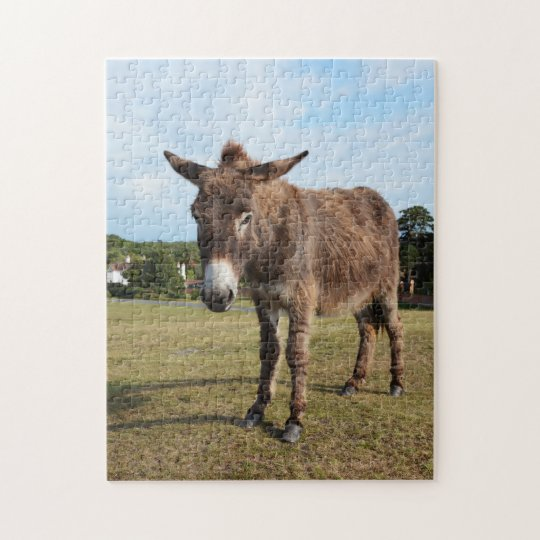 New Forest donkey jigsaw puzzle