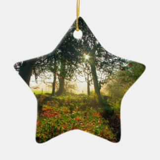 New Forest Garden Christmas Ornament