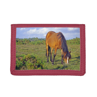 New Forest Horse Tri-fold Wallet
