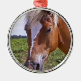 New Forest Ponies Christmas Ornament