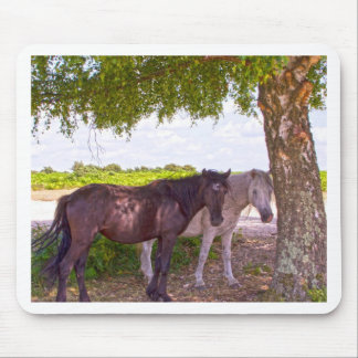 New Forest Ponies Mouse Pads