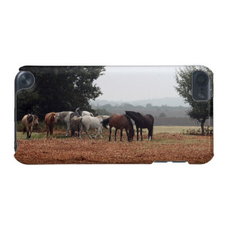 New Forest Ponies of Hampshire England iPod Touch (5th Generation) Cover