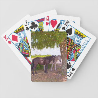 New Forest Ponies Poker Cards