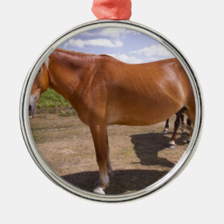 New Forest Ponies Silver-Colored Round Decoration