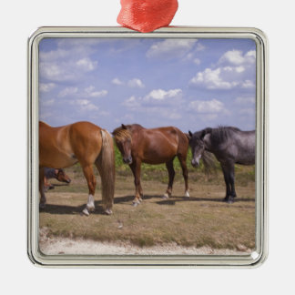 New Forest Ponies Silver-Colored Square Decoration