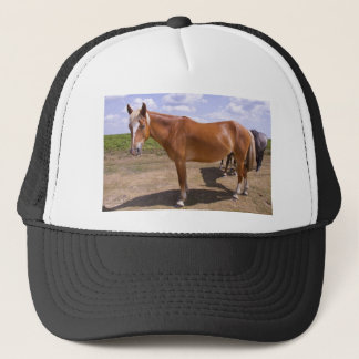 New Forest Ponies Trucker Hat