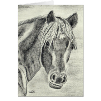 New Forest Pony (a238) Card