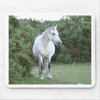 new forest pony mouse pads