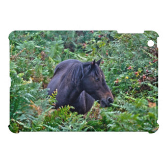 New Forest Pony Photo for Horse-lovers iPad Mini Case