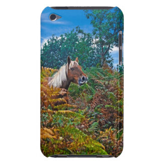 New Forest Pony Photo for Horse-lovers iPod Touch Covers