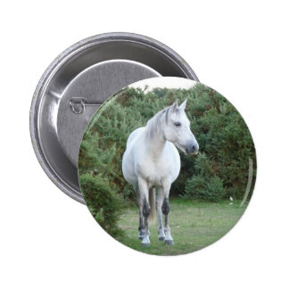 new forest pony pin