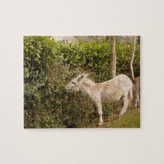 New Forest Pony roaming photo jigsaw Jigsaw Puzzle