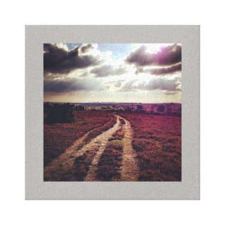 New Forest road Canvas Print