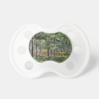 New Forest Woodlands HDR Photo Pacifier
