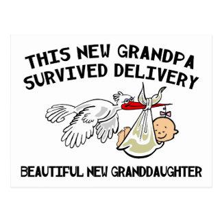 New Granddaughter - New Grandpa Postcard