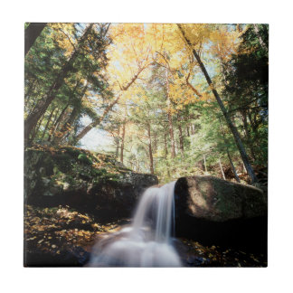 New Hampshire, A waterfall in the White Tile