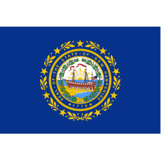 New Hampshire Flag Keychain Cut Out