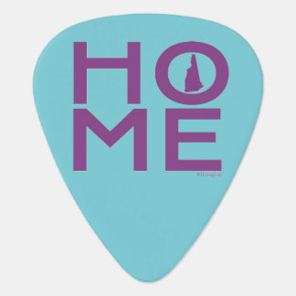 New Hampshire guitar pick