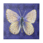 New Hampshire Karner Blue Butterfly Small Square Tile