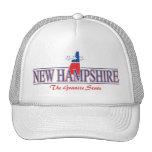 New Hampshire Patriotic Hat