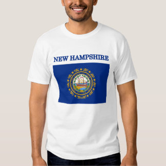 New Hampshire State Flag American Apparel T-shirt